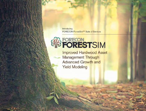 Service Spotlight: ForestSim™ Suite of Services