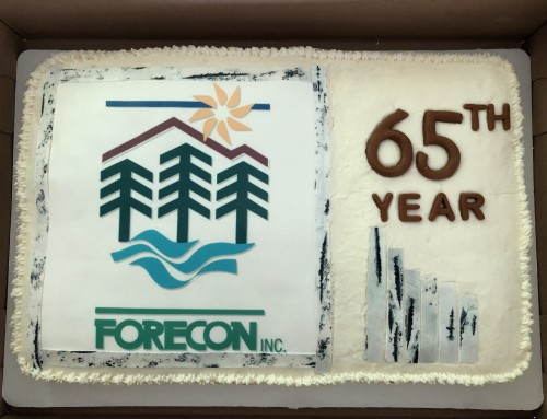FORECON's 65th Anniversary Celebration Continues at Company Picnic