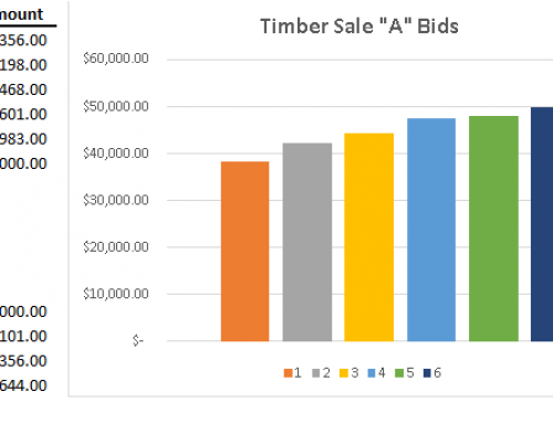 Despite a Weaker Timber Market, Bidding Still Brings the Best Results for Landowners