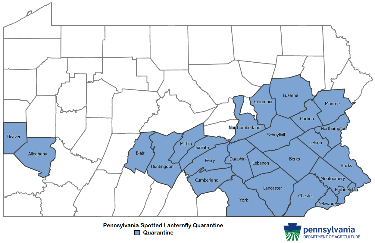 12 Counties Added to Pennsylvania's Spotted Lanternfly Quarantine
