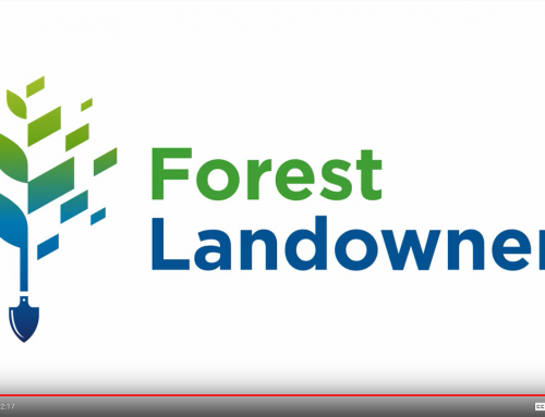 The Forest Landowners Association